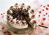 Black Forest cherry gateau and piece on cake slice
