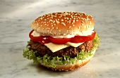 Cheeseburger with Lettuce Tomato and Mayonnaise