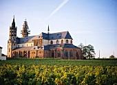 """Origin of """"Liebfraumilch"""": Liebfrauenstift church, Rheinhessen"""