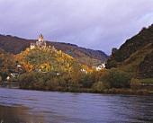 Kleiner Weinberg nahe der Reichsburg von Cochem an der Mosel