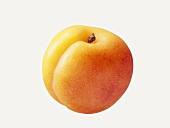 Eine Aprikose
