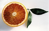Half of a Blood Orange with Leaf