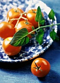 Fresh Cherry Tomatoes on a Platter