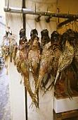 Mehrere tote Fasane an Haken hängend auf Markt
