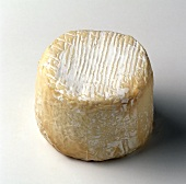 A round goat's cheese against a white background