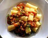 Rigatoni with spicy bean sauce on a plate