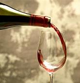 Junger Rotwein (Beaujolais) wird in ein Glas eingeschenkt