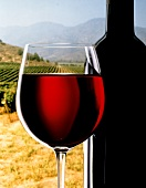 Filled red wine glass beside bottle in front of vineyard