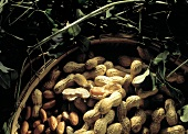 A Basket of Whole and Shelled Peanuts
