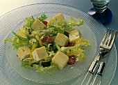 Mixed salad with cheese cubes (Brie), endive leaves