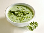 Dill Sauce in a Bowl with Chives Scallions and Parsley