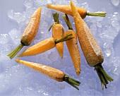Frozen Carrots on Ice