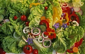 Butterhead Lettuce Salad with Vegetables and Flowers