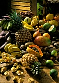 Exotic Fruit Still Life