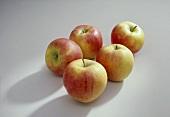 Five Elstar Apples