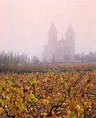 Vines in front of Regnie church in Beaujolais, Burgundy