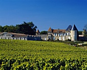 The world famous Chateau d'Yquem in Sauternes, Bordeaux