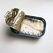 Sardines in a Partially Opened Can