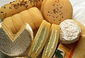 Still Life of Assorted Types of Harzer Cheese