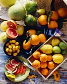 Assorted Citrus Fruit Still Life