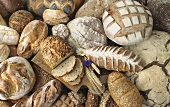 Still Life of Several Assorted Breads