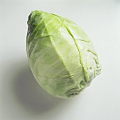 A Head of White Cabbage