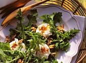 Dandelion Salad with Poached Egg