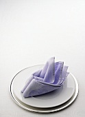 Plates and Lavender Napkin for Place Setting