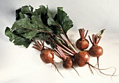 Five Red Beets with Greens