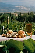 Biscotto and Vin Santo on table (outdoors, Populonia Italy)