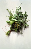 Assorted Herb Bouquet
