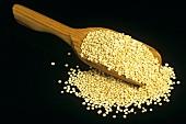 Quinoa (Inkakorn) auf Holzschaufel