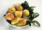 Fresh Williams Pears in a Bowl