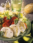 Insalata caprese (Tomaten und Mozzarella, Italien)