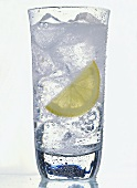 Glass of Carbonated Water; Lemon Slice