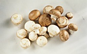 White and Brown Button Mushrooms