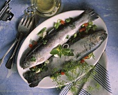 Herb trout in white wine (Italy)