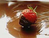 Fresh Strawberry Dipping into Chocolate Sauce