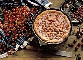 Cherry tart with Morello cherries