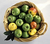 Äpfel im Korb: Granny Smith, Royal Gala & Golden Delicious