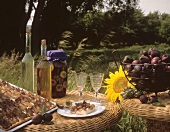 Plum cake and a jar of bottled plums (outdoors)