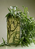 Bottle of tarragon vinegar and fresh tarragon