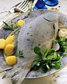 Carp cooked blue with boiled potatoes corn salad on plate
