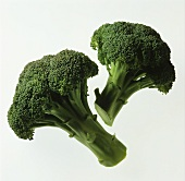 Two Pieces of Broccoli