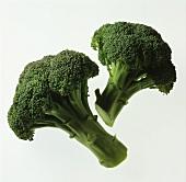 Zwei einzelne Broccoliröschen