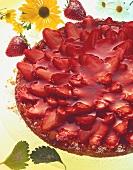 Strawberry gateau with fresh strawberries and clear glaze