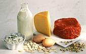 Eiweißreiche Produkte:Milch,Käse,Eier,Bohnen,Fleisch,Sprossen