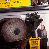 Making olive oil: fresh olives being ground