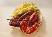 Two boiled lobsters with corncobs and lemon