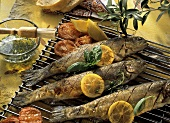 Grilled Whole Fish with Lemon and Herbs